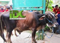 Qurban IDC di Daerah Binaan Dakwah Pinggiran Bekasi (2)