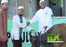 Qurban IDC di Pesantren Utsman bin Affan Dompu, Bima NTB